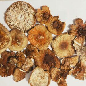 Мухомор красный шляпки — 4.5 грн