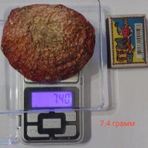 Мухомор 7.4 г